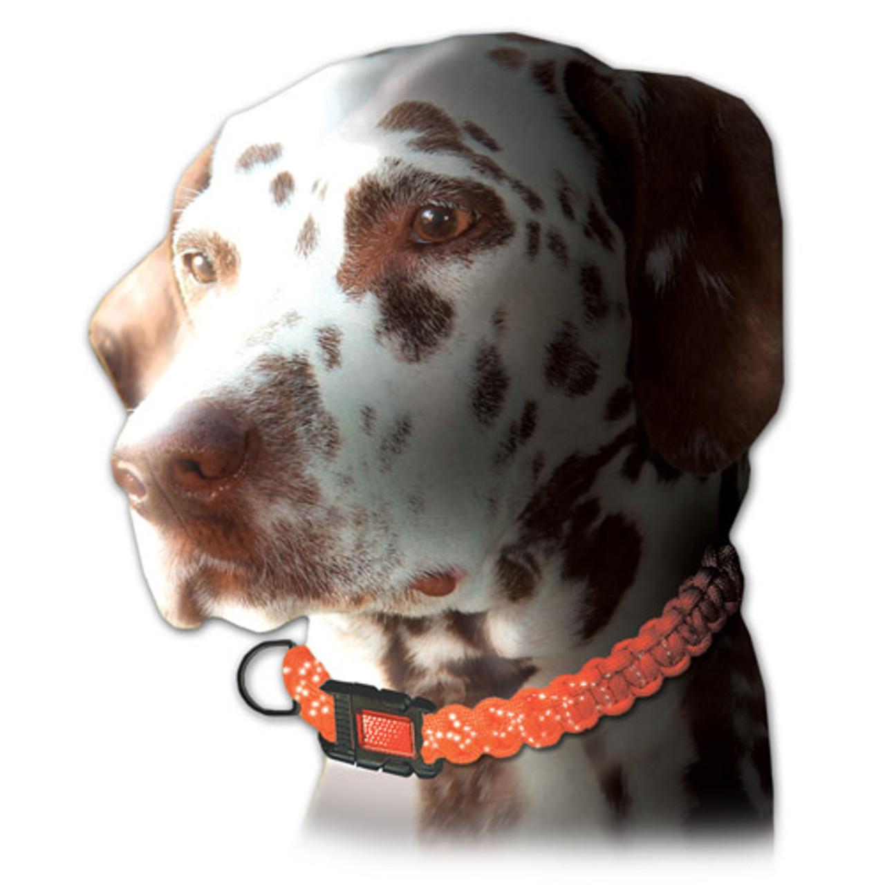 Parachute Cord Craft Reflective Dog Collar Kit