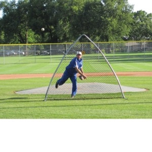 A-Screen (TM) Baseball Protective Screen
