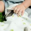 Little Unicorn Deluxe Bamboo Muslin Security Blanket2 2-Piece Set - Hedgehog + Charcoal