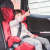 Diono Everett NXT Booster Car Seat - Plum