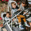 UPPAbaby Vista V2 Stroller - Gregory (Blue Melange)