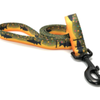 Fishy Dog Leash