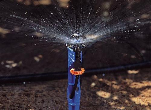 35 L/Hour Netafim SuperNet Pressure Compensated Sprinkler (Long Range Deflector) with Blue Stake and Tube