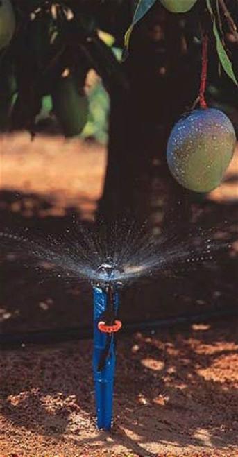 58 L/Hour Netafim SuperNet Pressure Compensated Sprinkler (Long Range Deflector) with Blue Stake and Tube