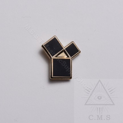 Past District Deputy Freemason Masonic Lapel Pin