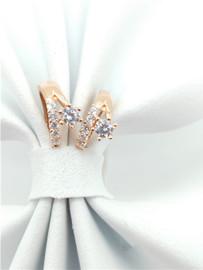 DH Jewelry Earring - E00890