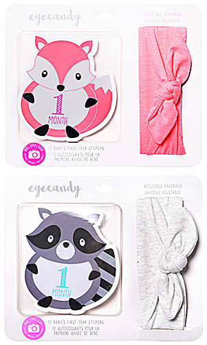 Eye Candy Baby's First Year Stickers