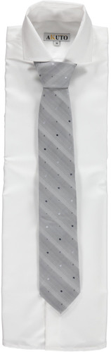 Silver Men's Ties 111