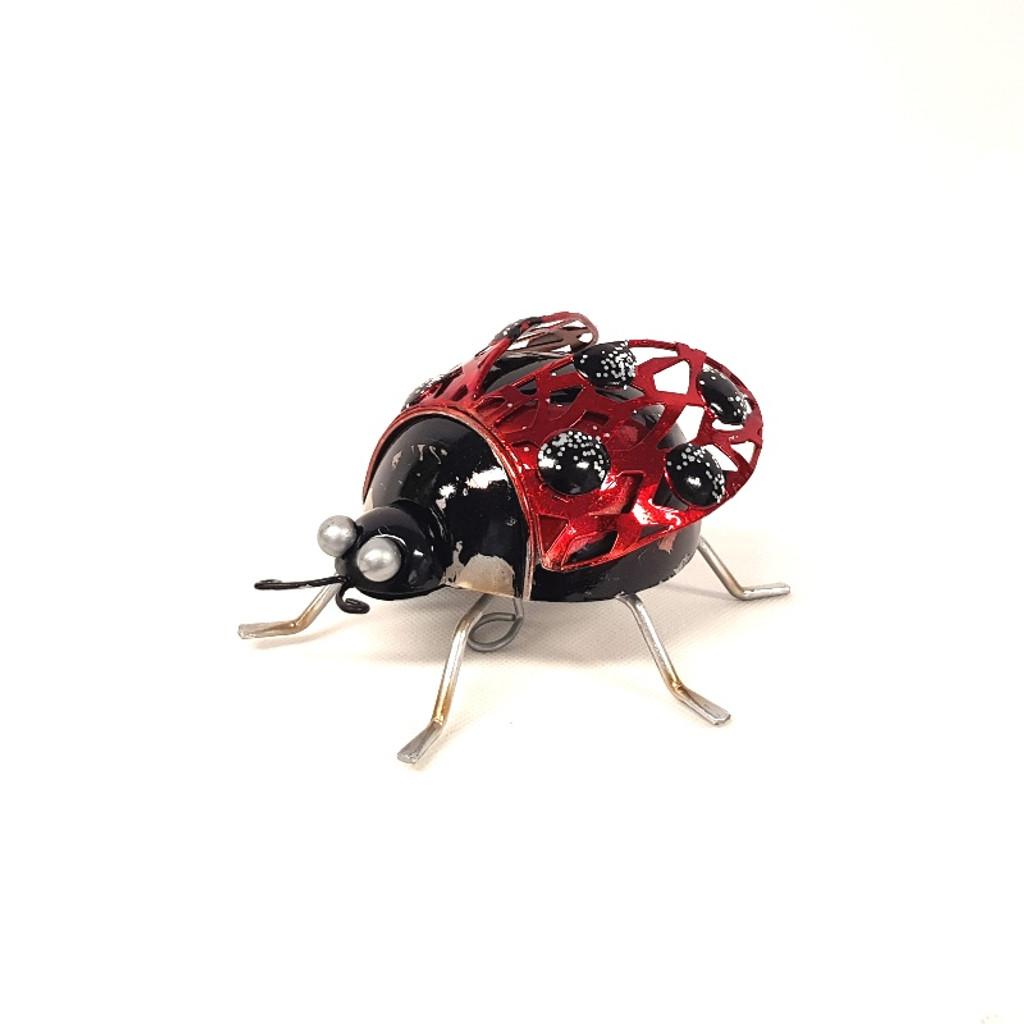 Ladybird - EH6011