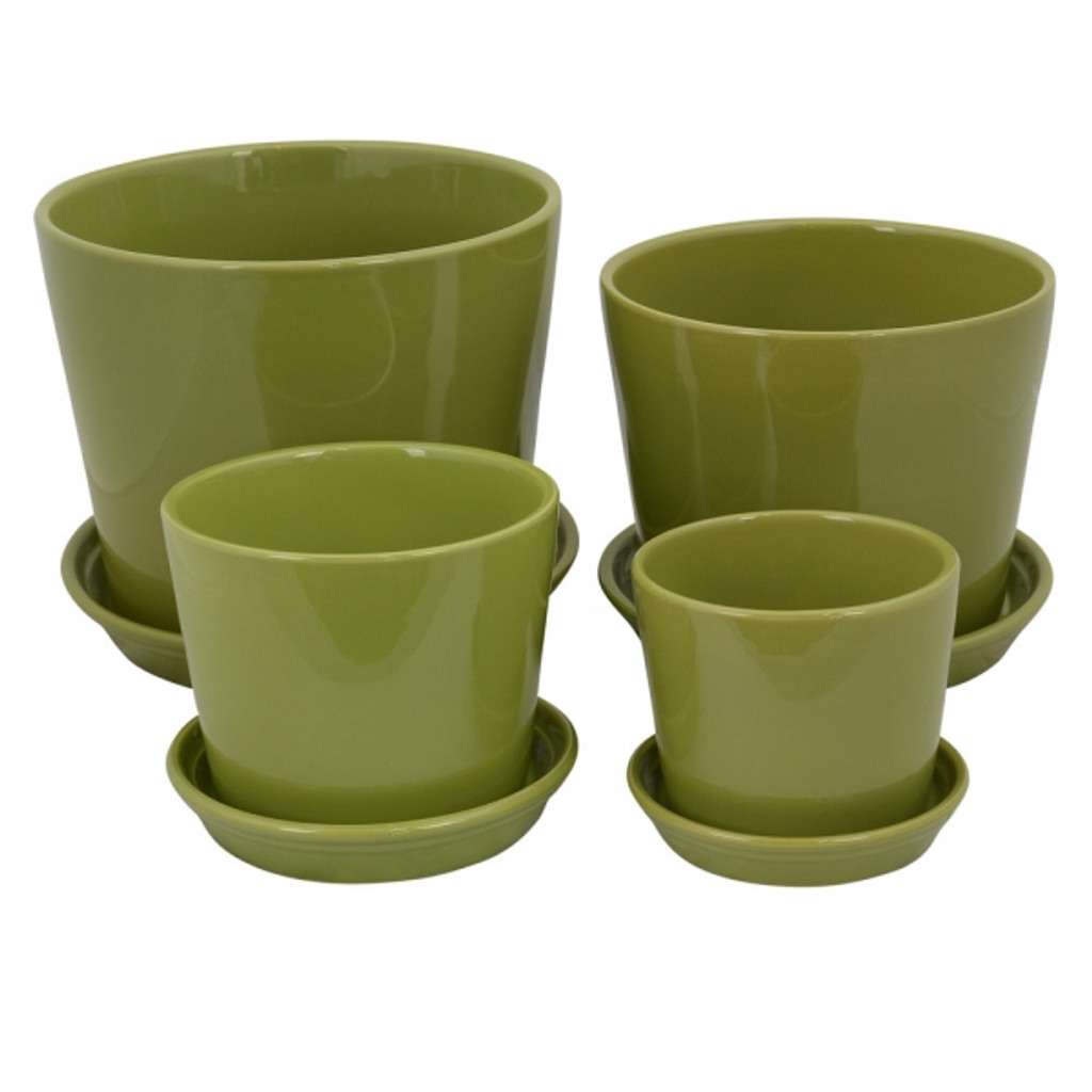 Size: 13-25cm & matching saucers