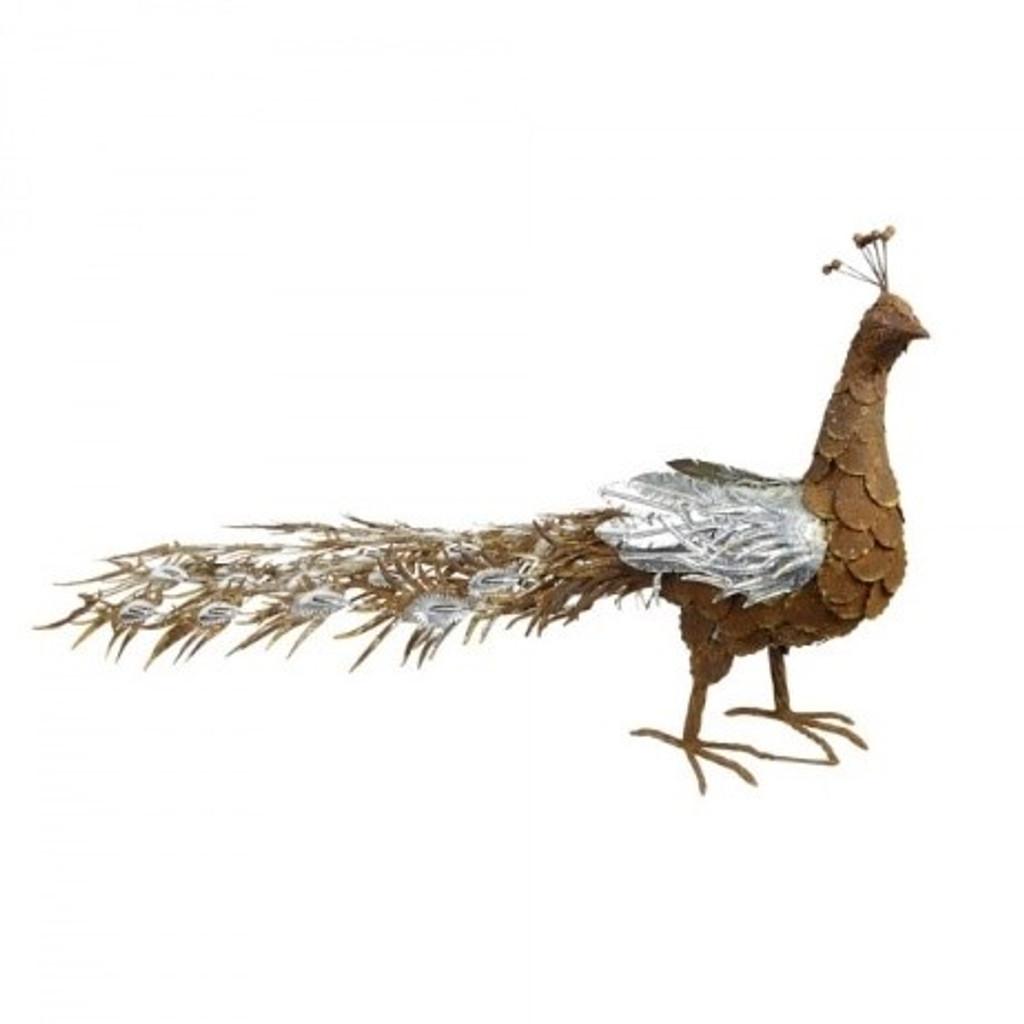 Silver Peacock - BHB17960