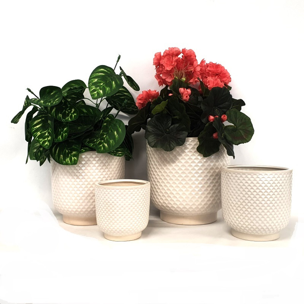 Extra Large white shell planter - DHP0104