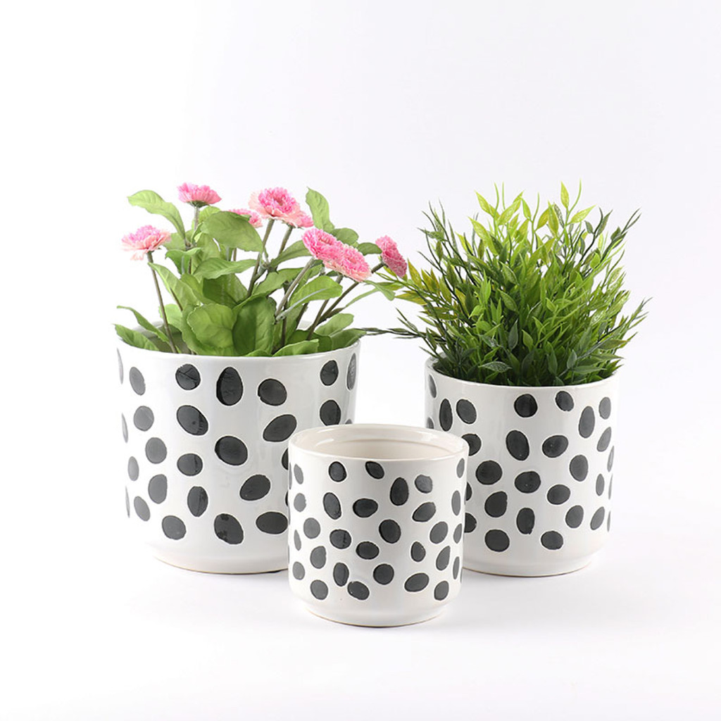 DOTS POT -  SMALL - SY024