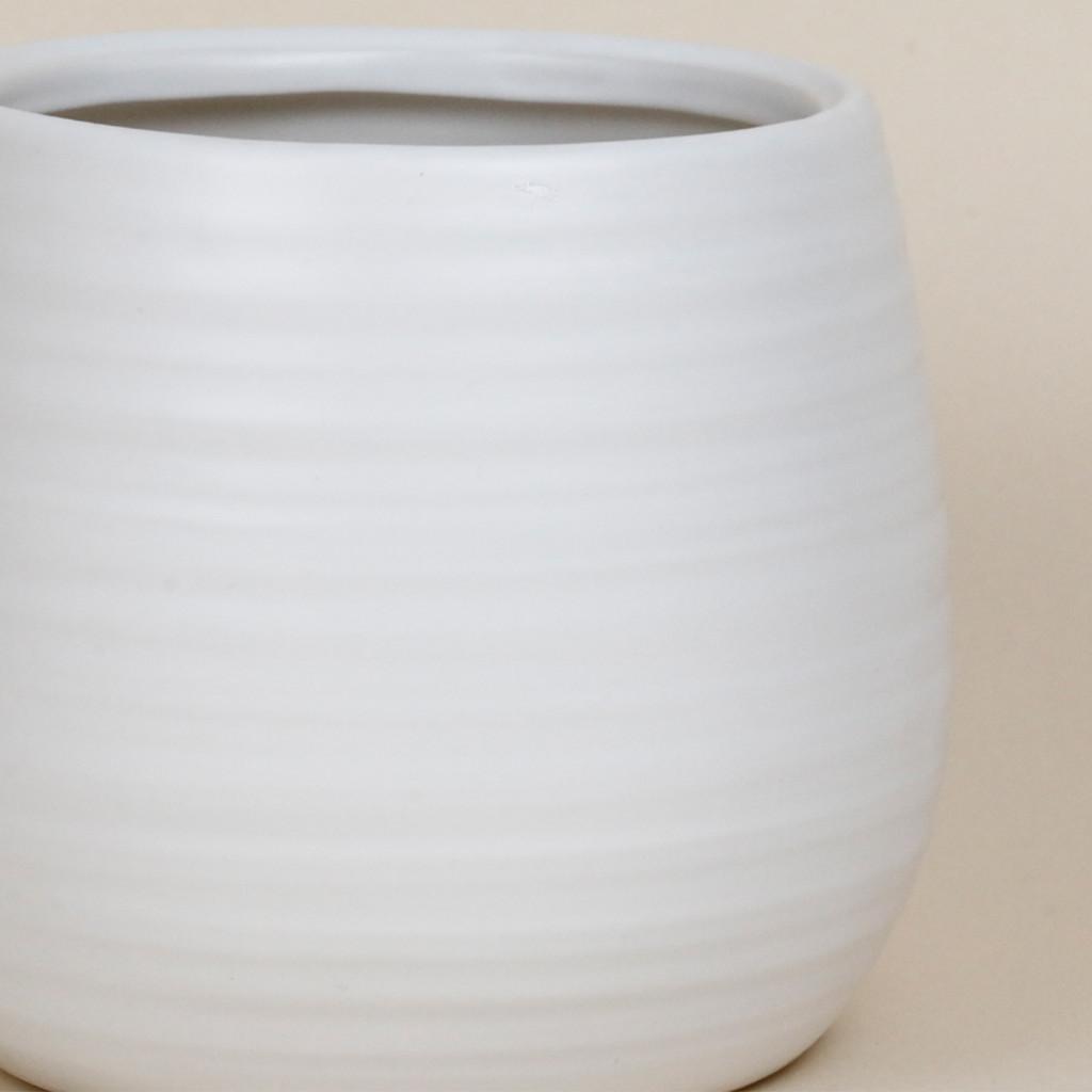 WHITE SWIRL LARGE - SY044