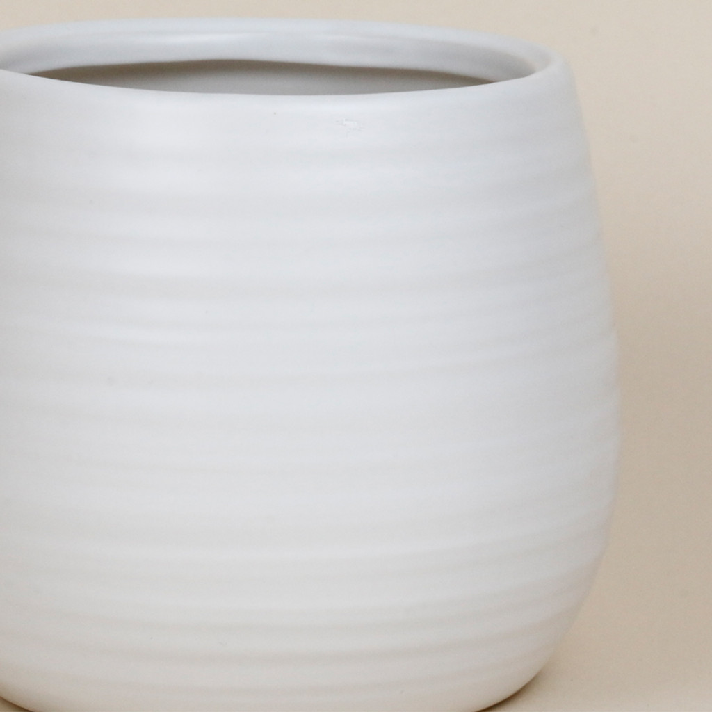 WHITE SWIRL MEDIUM - SY045