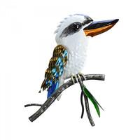 Kookaburra on Branch - EH6017