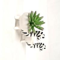Zac Zebra cactus pot - SS1018