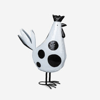 SPOTTY ROOSTER - HF4009