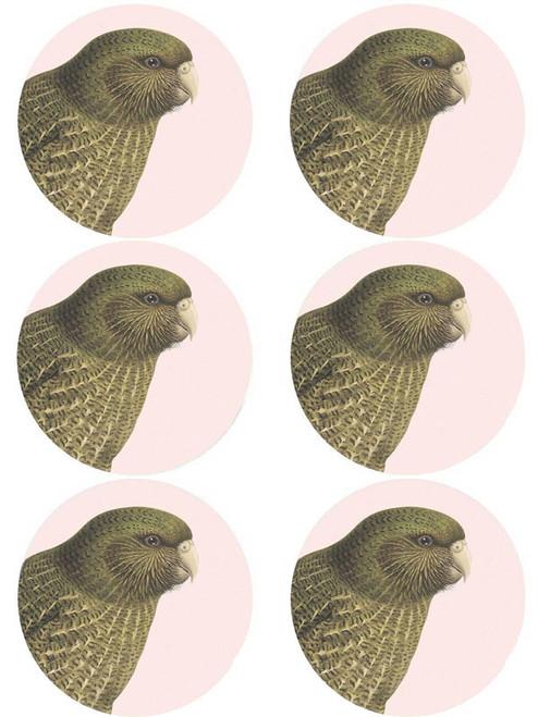 Hushed Pink Kakapo Coaster (Pack of 6)