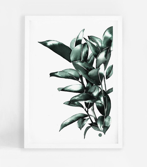 Rubber Plant Printed Artwork