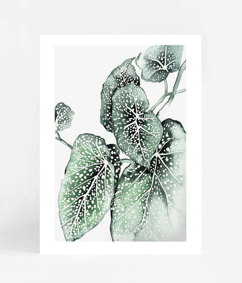 Spotted Leaves Printed Artwork