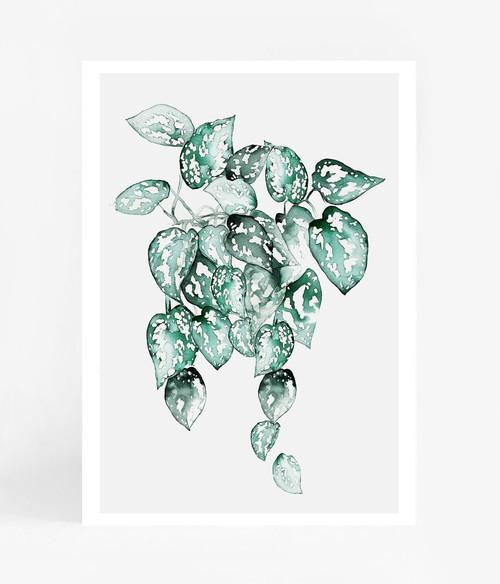 Spotted Waterfall Leaves Printed Artwork