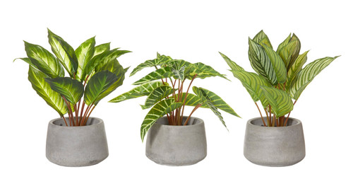 Artificial  Indoor Plants - Set of 3