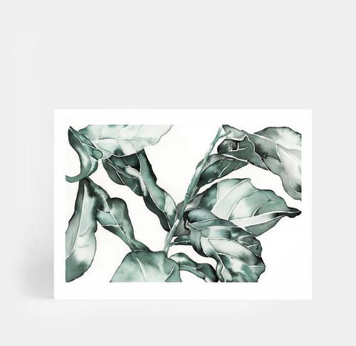 Ficus Fiddle Leaf Printed Artwork