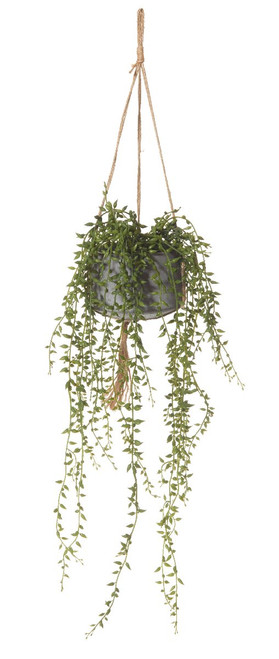 Artificial  String of Pearls - Hanging Pot