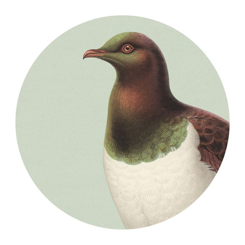 Green Kereru Placemat