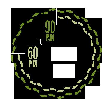 walk-thru.png
