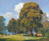 Art Prints of Noon, Olinda by Arthur Streeton