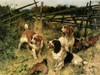 Art Prints of A Good Day in the Field by Arthur Wardle