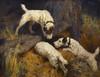 Art Prints of Rabbiting by Arthur Wardle