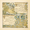 Art Prints of Oak and the Reeds & The Fir and the Bramble, Aesop's Fables