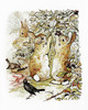Art Prints of Three Bunnies Gather Blackberries by Beatrix Potter