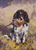 Art Prints of Spaniel, Dickey with Pheasant by Carl Rungius