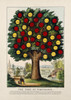 Art Prints of Tree of Temperance, Benefits Caused by Healthy Living by Currier & Ives