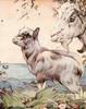 Art Prints of The Kid by Edward Julius Detmold