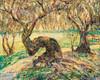 Art Prints of Indian River, Myakka Jungle, Florida by Ernest Lawson