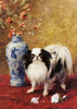 Art Prints of Mikado by Frances Fairman