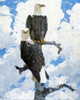Art Prints of Two Eagles by Frank Weston Benson