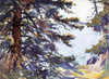 Art Prints of Through the Spruces by Frank Weston Benson
