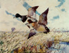 Art Prints of Blue Bills by Frank Weston Benson
