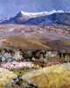 Art Prints of New Mexico Spring by Fremont Ellis