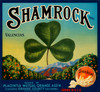 Art Prints of 020 Shamrock Valencias, Fruit Crate Labels