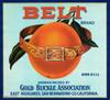 072 Belt Brand Orange, Fruit Crate Labels   Fine Art Print