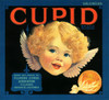 08o Cupid Valencias, Fruit Crate Labels   Fine Art Print