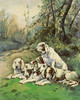 Art Prints of After the Hunt by Henriette Ronner Knip