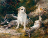 Art Prints of Terrier and Hares by Heywood Hardy